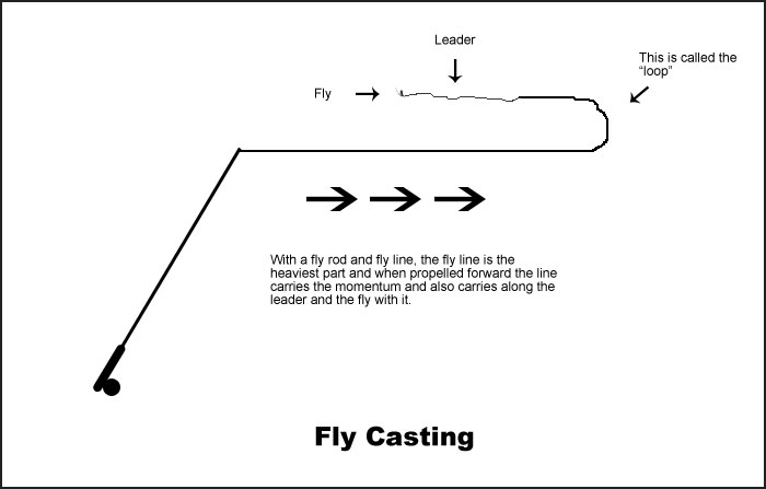Fly Casting Method - What is fly fishing