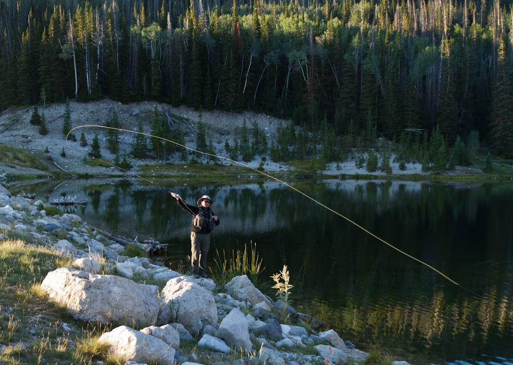 Fly Fisherman Casting a Fly Rod
