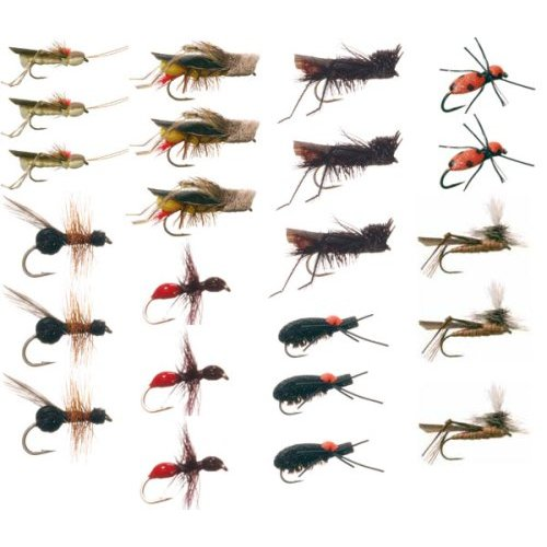 Fly Fishing Fly Assortment