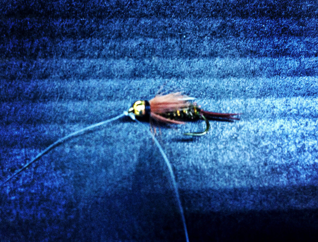 Dropper Attached to Eye of Hook - Tandem Fly Setup - Two Fly Setup
