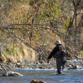Fly Fishing Pocket Water - Fly Fishing Tips