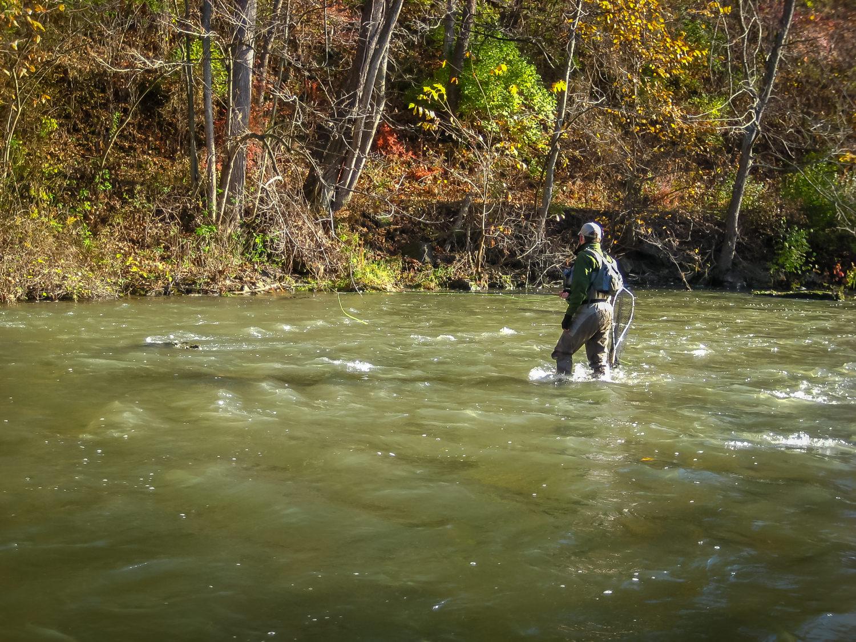 Wading basics and tips the fly fishing basics for Fly fishing basics