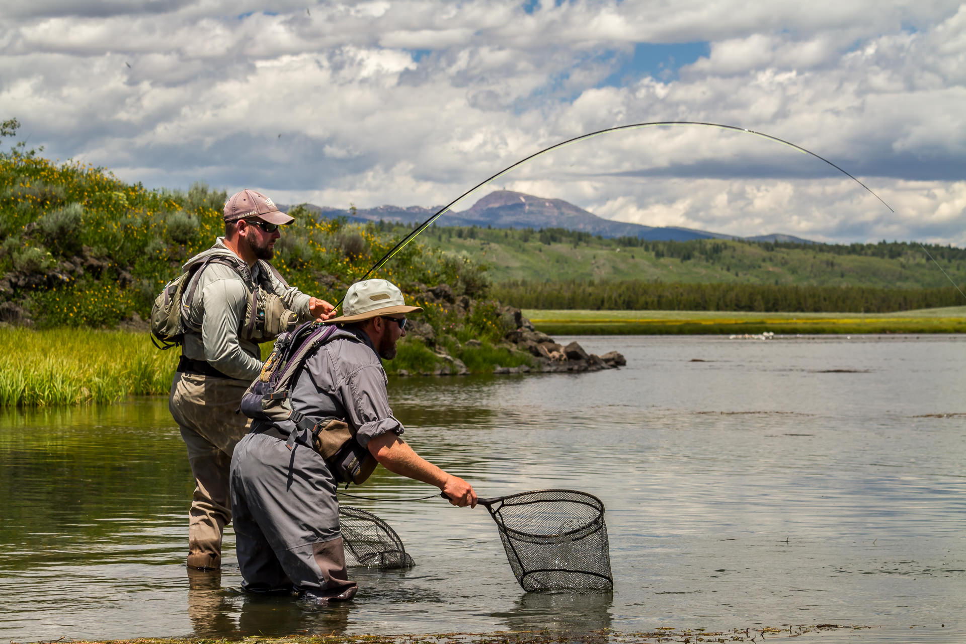 fly fishing entomology basics the fly fishing basics