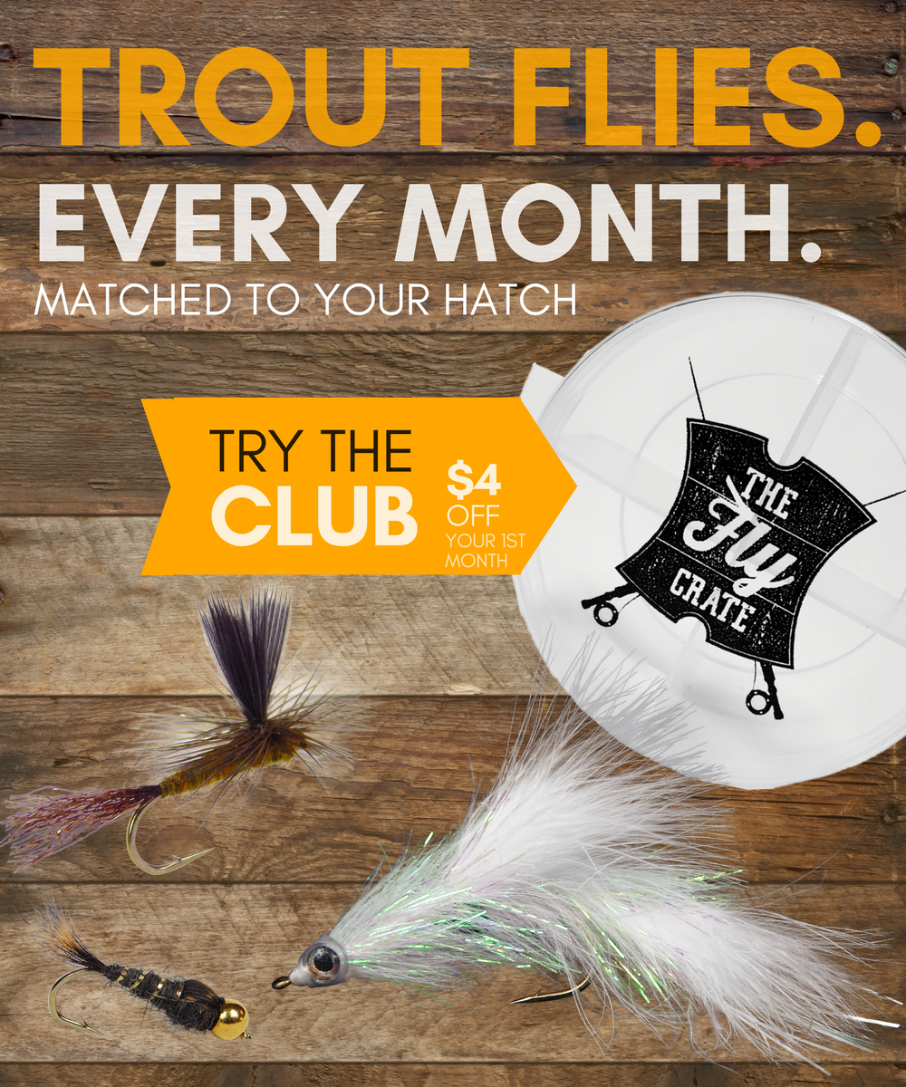 Fly fishing leader and tippet what why and how the fly for Fly fishing basics