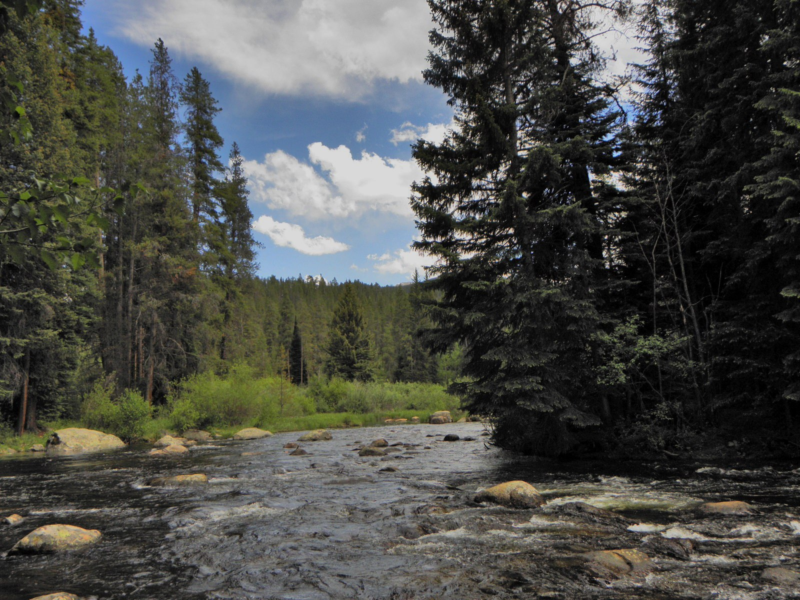 5 of the best fly fishing destinations in the united for Best trout fishing in colorado