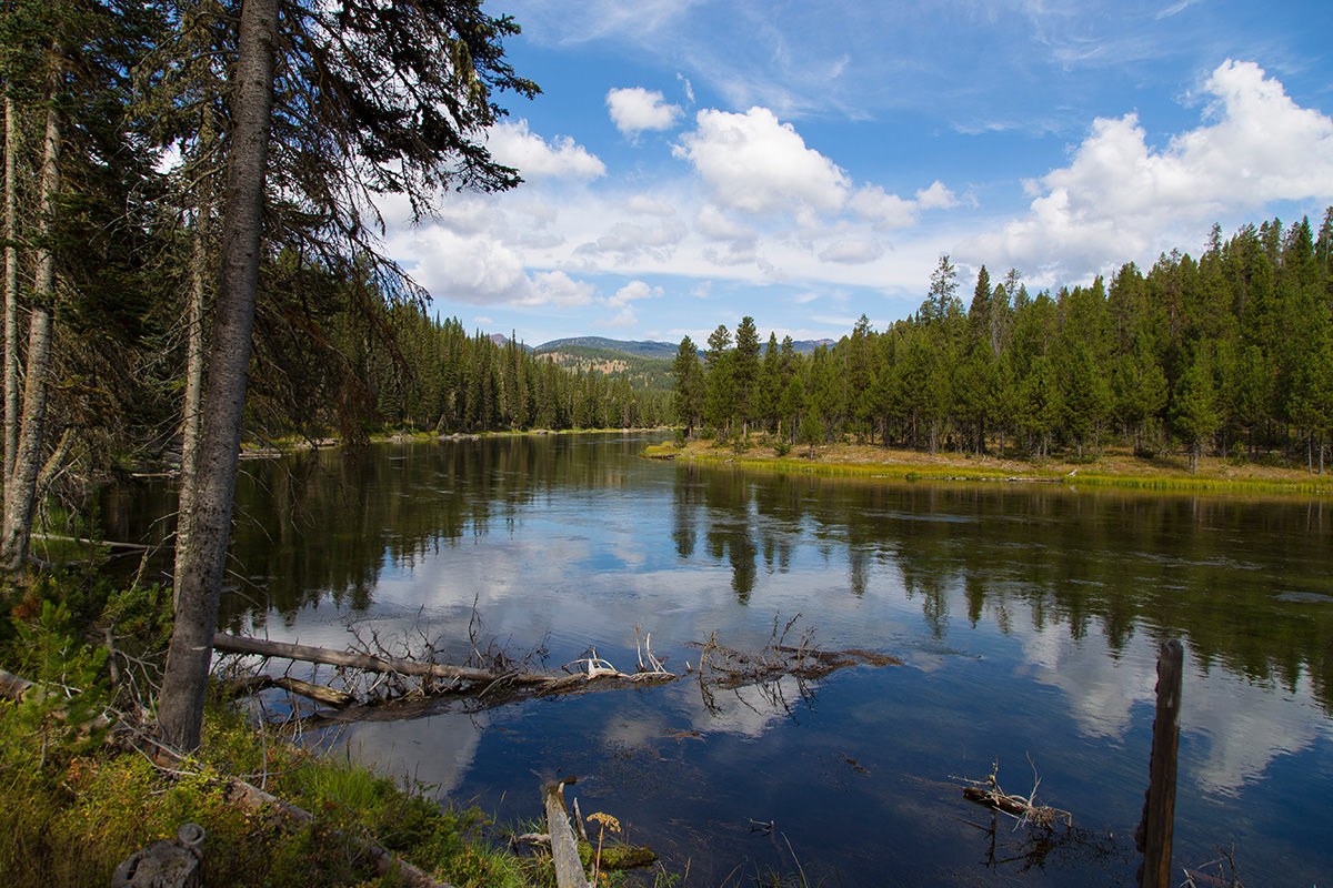 5 of the best fly fishing destinations in the united for Henry s fork fishing